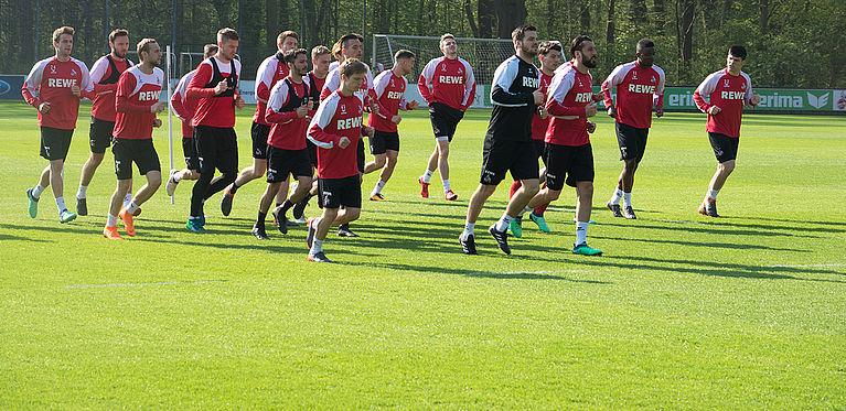 1 Fc Köln Junge Komplettiert Das Trainerteam